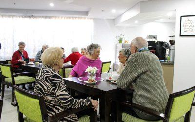 Cibare Cafe